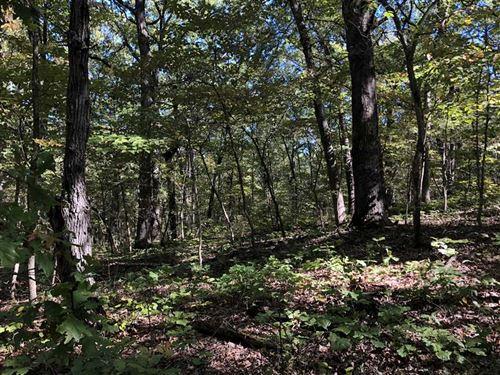 70 Acres Recreational Property : Lincoln : Benton County : Missouri