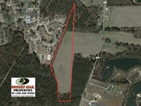 Reduced, 18 Acres of Farm And Tim : Lumberton : Robeson County : North Carolina