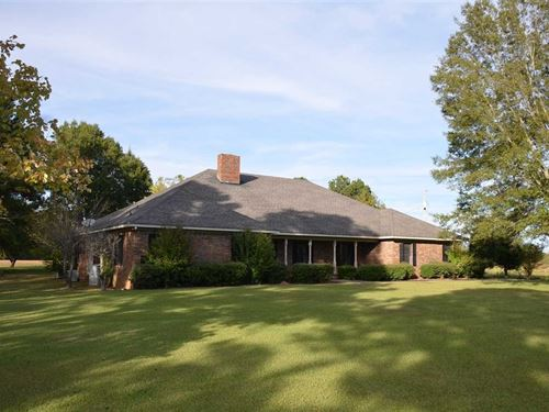 Open Land Farm 4 Sale, Danville : Danville : Morgan County : Alabama