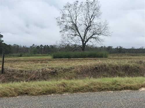 Building Lot in Houston County, AL : Dothan : Houston County : Alabama