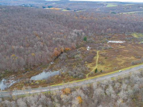 Double Road Frontage And Woods : Columbus : Chenango County : New York