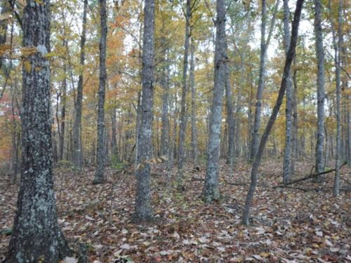 12.74Ac In Private Country Location : Moss : Clay County : Tennessee