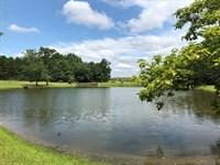 Spring Creek Farm : Bartow : Jefferson County : Georgia
