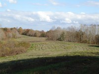 125+ Ac, Pasture, Creeks, Pond : Red Boiling Springs : Clay County : Tennessee