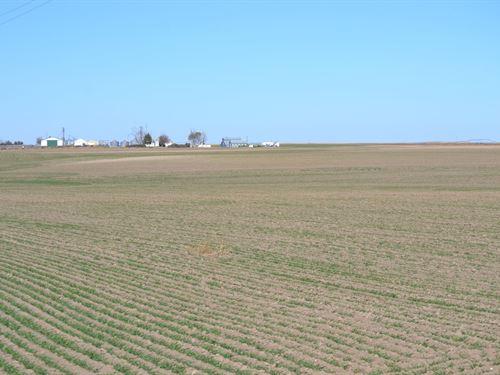 Schuessler Dryland, Cheyenne County : Potter : Cheyenne County : Nebraska