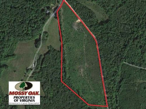 Reduced, 20 Acres of Hunting Land : Pamplin : Prince Edward County : Virginia