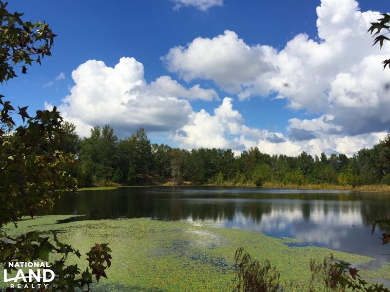 Hwy 903 Mini-Farm With Pond And Bui : Land for Sale : Jefferson : Kershaw  County : South Carolina