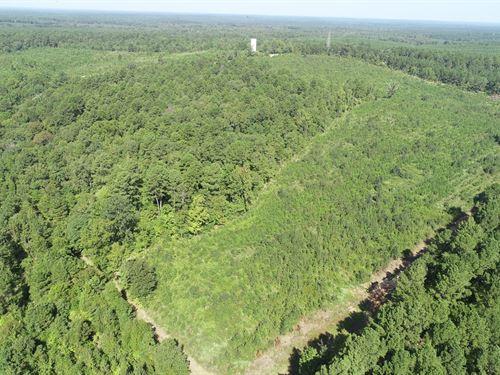 Recreational Pine Timberland : Sparkman : Dallas County : Arkansas
