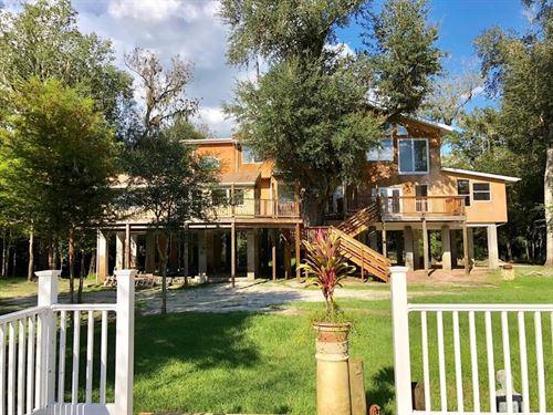 Suwannee Riverfront Property 6 : Branford : Lafayette County : Florida