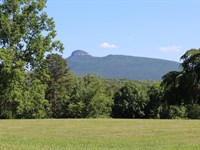 Land Pilot Mountain, NC Great : Pilot Mountain : Surry County : North Carolina