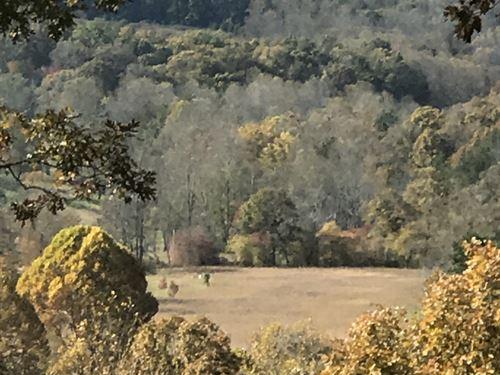 Year Round Mountain View Lot : Blairsville : Union County : Georgia