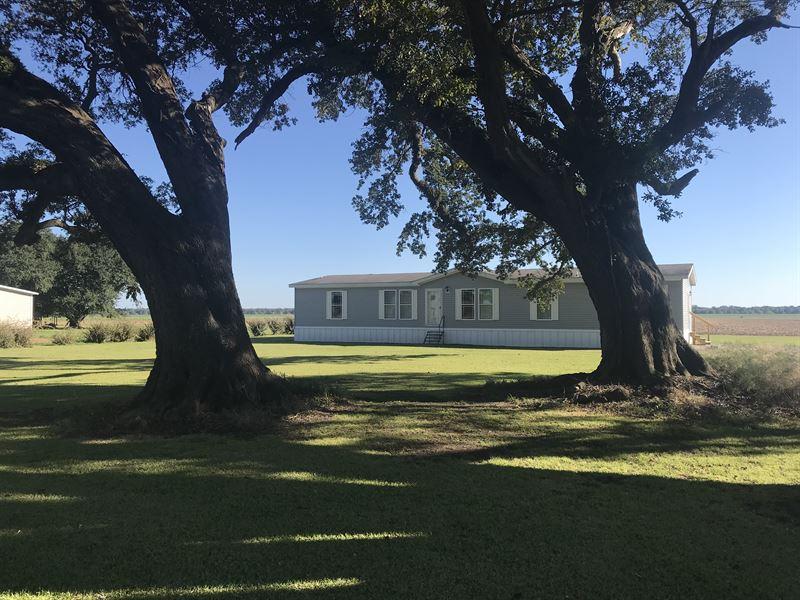 Perfect Residence Or Getaway : Newellton : Tensas Parish : Louisiana