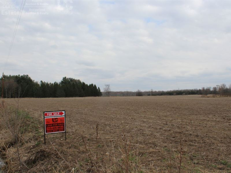 Acreage With Income Producing Ag : Owen : Clark County : Wisconsin