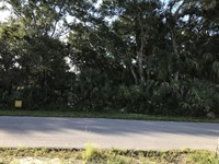 Great Lot In A Growing Area : North Port : Sarasota County : Florida