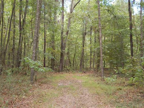 5 Acres Near Pike Road School : Pike Road : Montgomery County : Alabama