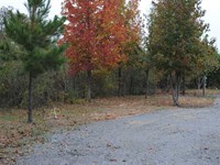 Perfect 7.04 Acre Hunting And Fish : Biscoe : Prairie County : Arkansas
