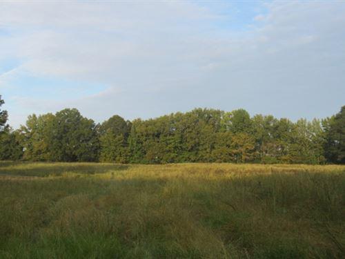 10.09 Acres In Tate County In Senat : Senatobia : Tate County : Mississippi