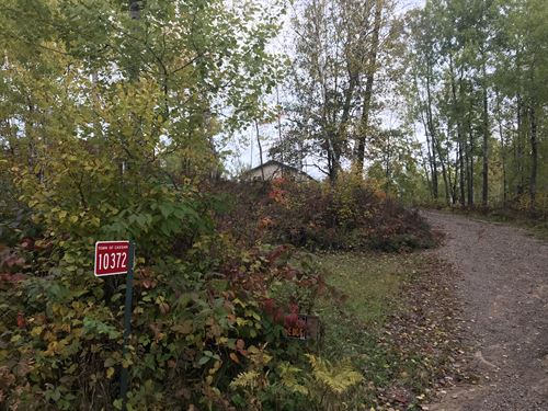15+/- Ac On Tomahawk River Frontage : Cassian : Oneida County : Wisconsin