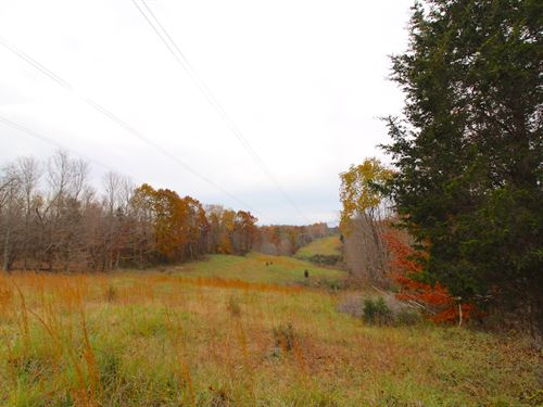 Edgington Rd, 130 Acres : South Salem : Ross County : Ohio
