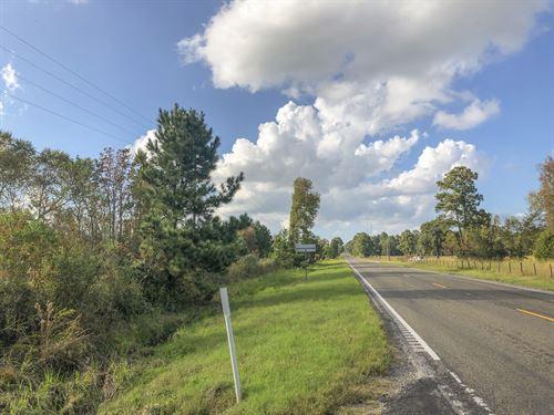 30 Ac Hwy 75, Pasture Land : Huntsville : Walker County : Texas