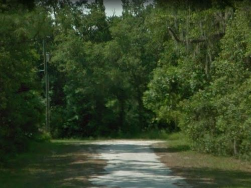 Large Royal Highlands Lot Culdesac : Weeki Wachee : Hernando County : Florida