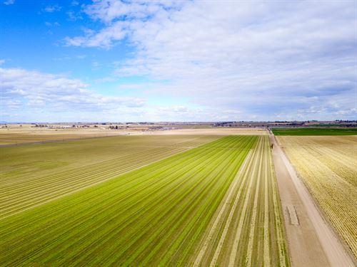 Weld County Farm Minerals, Water RI : Greeley : Weld County : Colorado