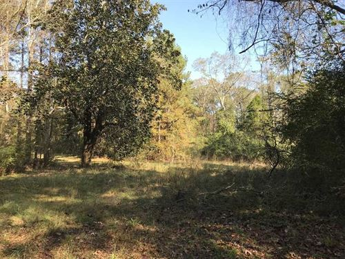 135 Acre Investment, Hunting And : Meridian : Lauderdale County : Mississippi
