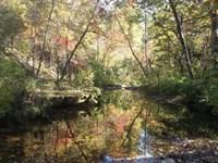 263-Acres Noblett Creek, Live : Willow Springs : Howell County : Missouri