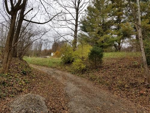 Farmland Mountain Views, Chilhowie : Chilhowie : Washington County : Virginia