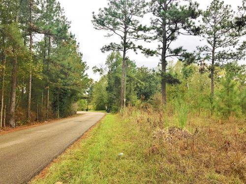 25.5 Acres Development Land For Sal : Hattiesburg : Lamar County : Mississippi
