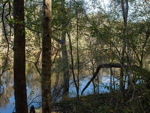 2 Lots For The Price of One : Live Oak : Suwannee County : Florida