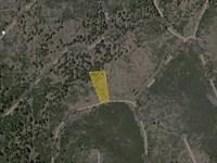 1.41 Acres Cal Pines, Modoc, Ca : California Pines : Modoc County : California