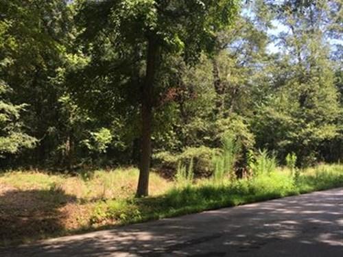 Stunning Lot, Large Old Hardwoods : Monroe : Walton County : Georgia