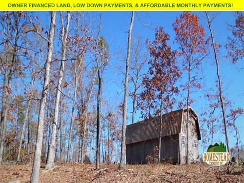 Hunting/Homestead Property & Cabin : Greenville : Wayne County : Missouri