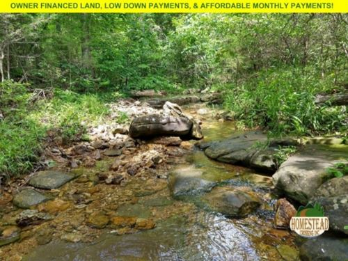 Year-Round Creek, Trails, Campsite : Gentryville : Douglas County : Missouri