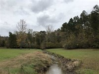 40 Acres in Clark CO Arkansas Just : Amity : Clark County : Arkansas