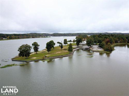 Sand Island Peninsula : Millers Ferry : Wilcox County : Alabama