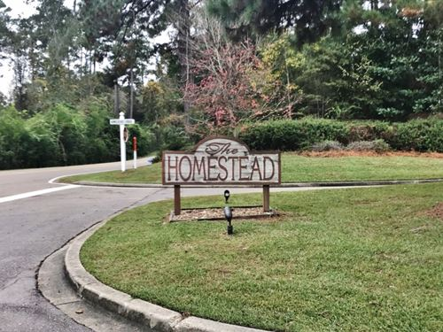 5.5 Acre Lot For Sale Homestead Sub : Hattiesburg : Forrest County : Mississippi