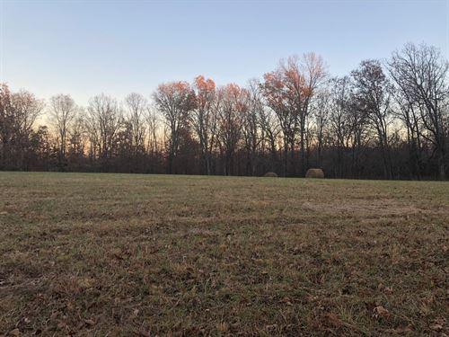 Recreational Land Bollinger County : Patton : Bollinger County : Missouri