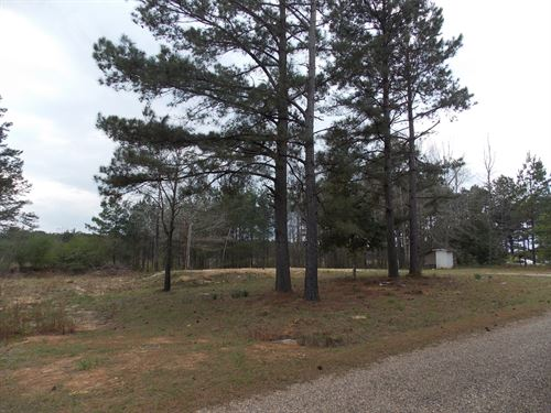 1 Acre Lincoln County Bogue Chitto : Bogue Chitto : Lincoln County : Mississippi