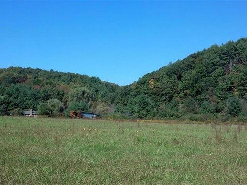 Pasture Land Creek Frontage Floyd : Floyd : Virginia