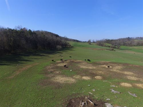 35 Acres Pasture In Hamblen County : Whitesburg : Hamblen County : Tennessee
