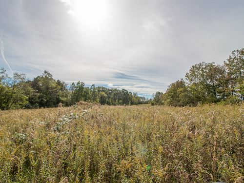 Bean Hollow Rd, 71 Acres : Athens : Ohio