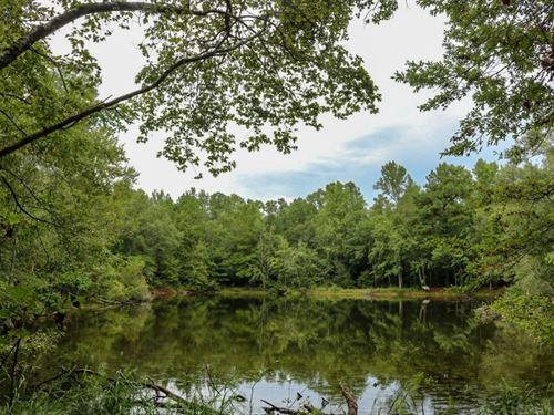 86 Acres In Lamar County In Lumbert : Lumberton : Lamar County : Mississippi