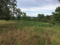 View of Bull Shoals Lake For Sale : Lead Hill : Marion County : Arkansas