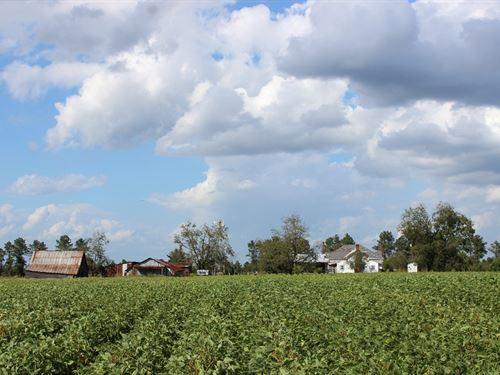 Beautiful Old Farmstead, Mixed Uses : Buena Vista : Marion County : Georgia