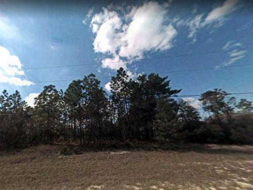 Marion County, Fl $25,000 : Ocala : Marion County : Florida