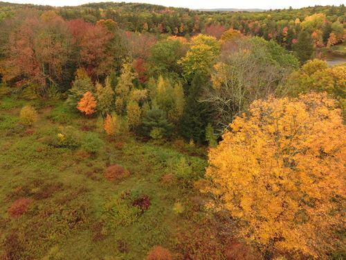 Norlands Washburn : Livermore : Androscoggin County : Maine