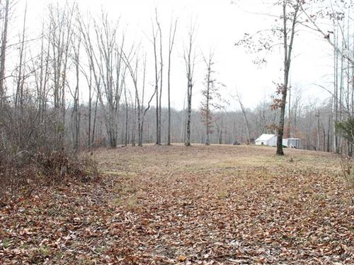 187 Acres of Heavily Wooded Huntin : Columbia : Adair County : Kentucky