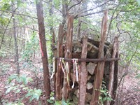 Hunting Land Bordering Gov't Strip : Gainesville : Ozark County : Missouri